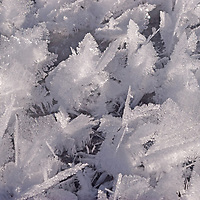 Snow and ice crystals near Bozeman, Montana.