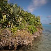 Island landscape, Ile aux Aigrettes, Mauritius