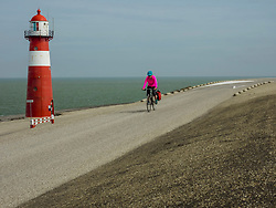 Woman riding bike on road by sea