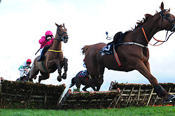 Brace Yourself and jockey Sean Flanagan (left) go on to win the Tayto Group Maiden Hurdle during day two of the Down Royal Festival.