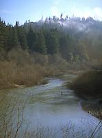 Steelhead fisherman in the Navarro River in Anderson Valley California