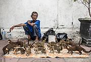 INDONESIA, Central Java, Yojakarta, street seller