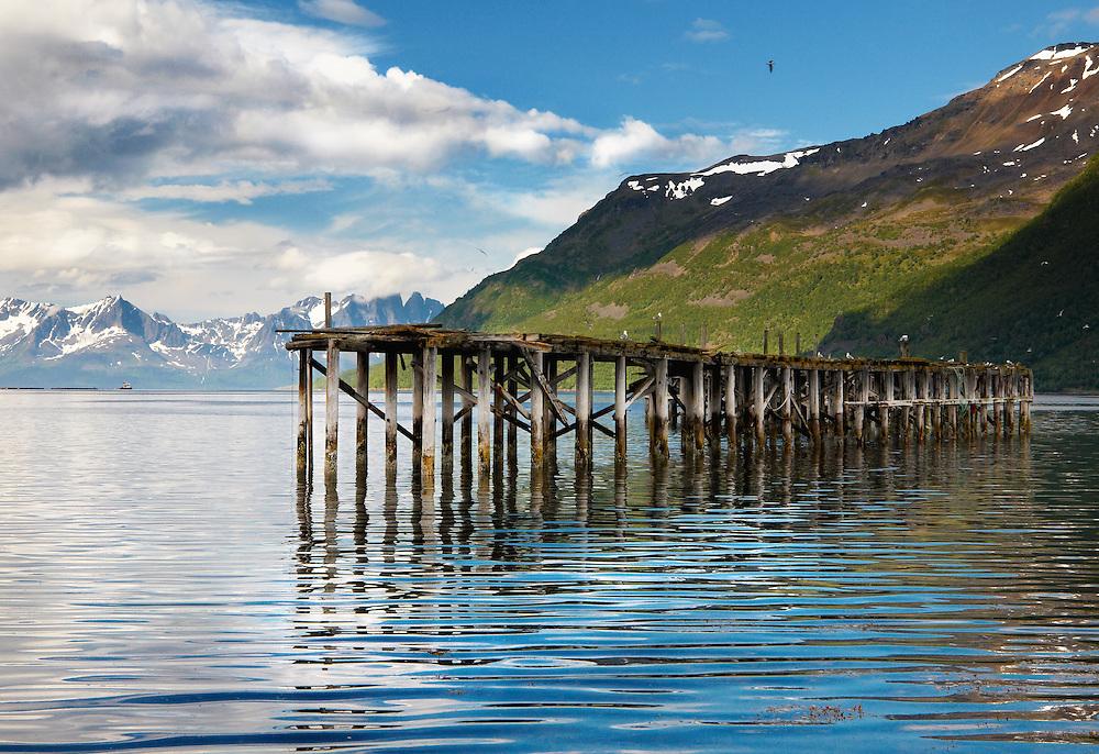 Norway - Mole in Burfjord