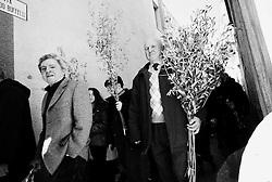 Reportage sviluppato ad Alessano (LE). Viene presa in considerazione fotograficamente, la gente che popola il paese nei suoi bar, piazze, strade, giardini pubblici. Ed, insieme a questa, i particolari e gli eventi caratterizzanti il luogo...La processione, nella mattinata della domenica delle Palme, percorre successivamente alla benedizione, le vie del centro storico..