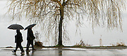 A rainy scene at Seattle's Green Lake in March.<br /> <br /> Staff Photographer / The Seattle Times