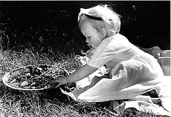 Young girl sitting in garden playing with plants,
