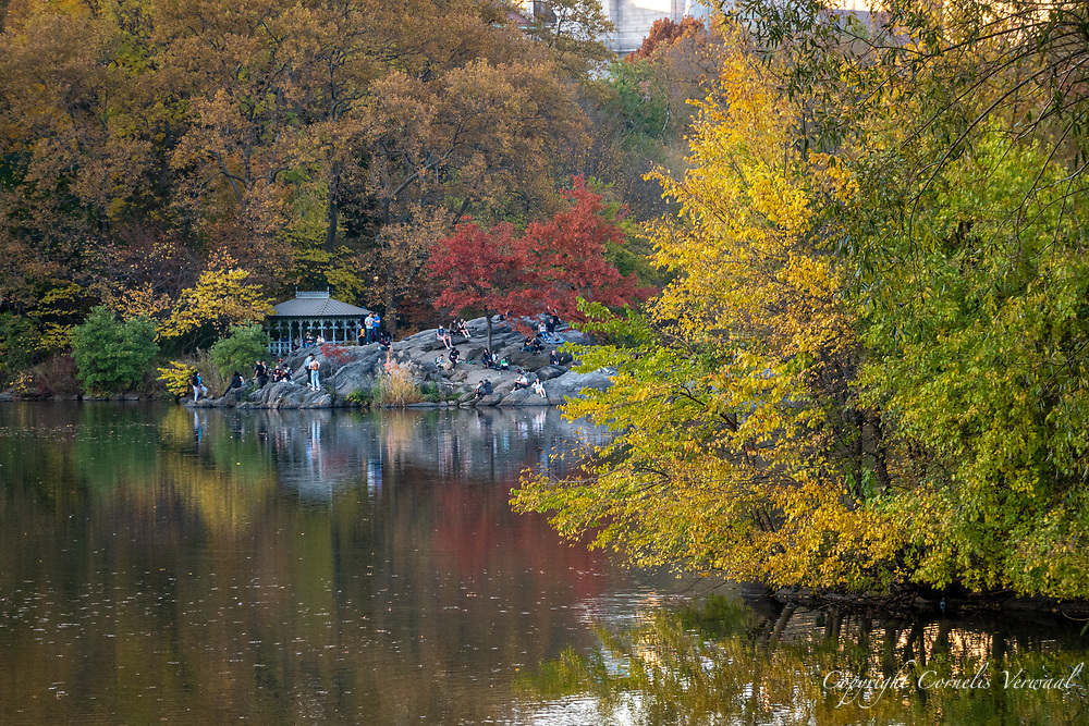 The Lake with  a view of The Hernshead and Ladies Pavilion in Central Park, Nov. 7, 2020.