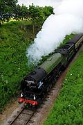 UK, 7 June 2009: The Tornado, a Peppercorn class A1 Pacific steam locomotive, on the West Somerset Railway heads towards Crowcombe Heathfield station. Photo by Peter Horrell / http://peterhorrell.com