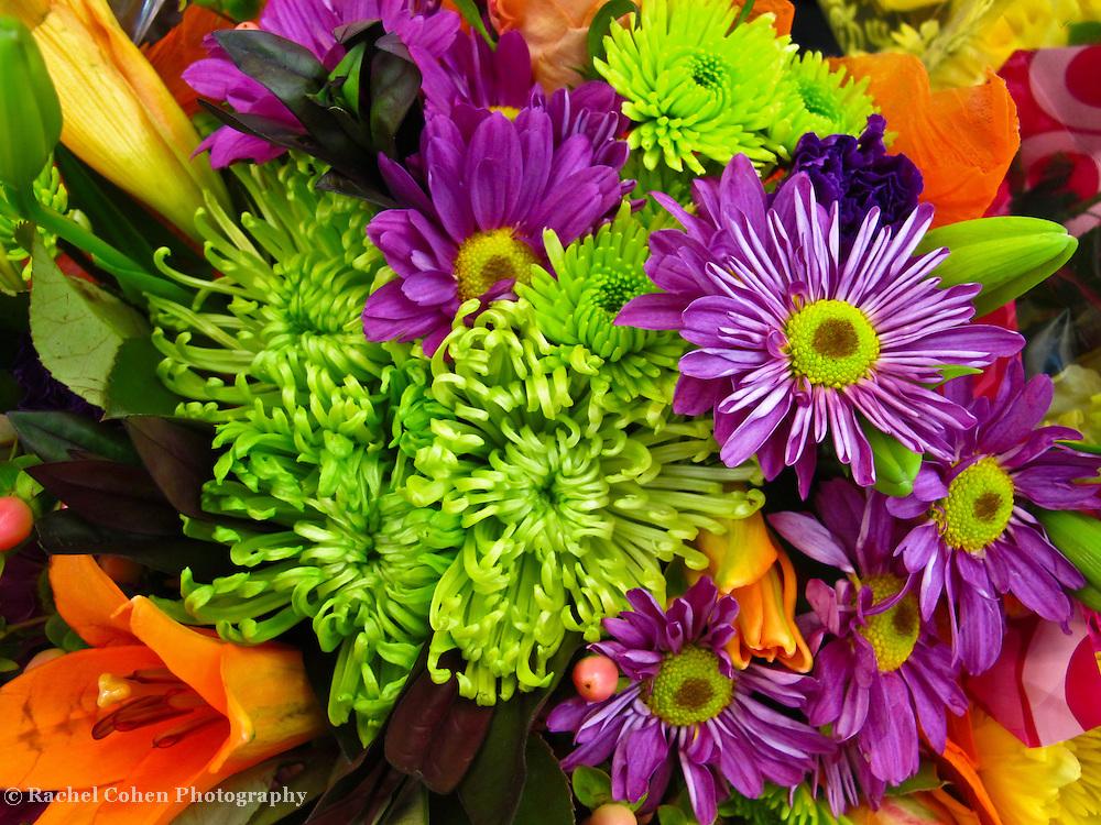 """Spring Blast""<br /> <br /> Colorful floral image!!<br /> <br /> Flowers by Rachel Cohen"