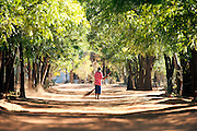 A local worker sweeping leaves from a dusty road in the Berenty Reserve, Madagascar