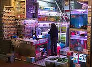 Aquarium shop at Goldfish Market, Tung Choi Street, Hong Kong, China.