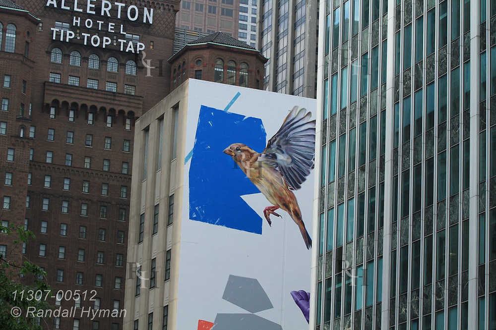 Mural of flying sparrow brightens cluster of tall buildings along Magnificent Mile in downtown Chicago, Illinois.