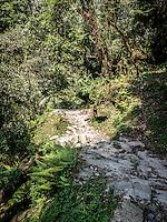 Annapurna Trail.