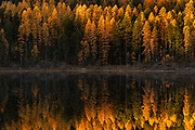 Fall reflections on Salmon Lake, Montana.