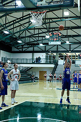 22 January 2019: Quarterfinal round game of the 108th McLean County Tournament at Shirk Center in Bloomington Illinois.   Tri Valley Vikings v GCMS (Gibson City - Melvin - Sibley) Falcons