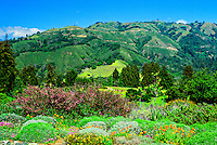 View from Post Ranch Inn, Big Sur, Monterey County, California USA