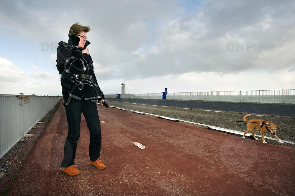 Nederland Den Oever Zurich 22 november 2008 20081122 Foto: David Rozing ..Serie afsluitdijk. De Afsluitdijk is een belangrijke waterkering en verkeersweg in Nederland. De waterkering sluit het IJsselmeer af van de Waddenzee. Hieraan ontleent de dijk zijn naam. De verkeersweg, onderdeel van Rijksweg a7, verbindt Noord-Holland met Friesland...Vrouw laat haar hond uit op afsluitdijk tijdens stormachtig weer. Guur weer, koud, wind, waaien, winderig, hard, harde, uitwaaien, hondje, verwaaien, frisse neus halen, herfst, herfstig, hondje uitlaten, weersomstandigheden, klimaat..Foto David Rozing