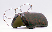 eyeglasses with case