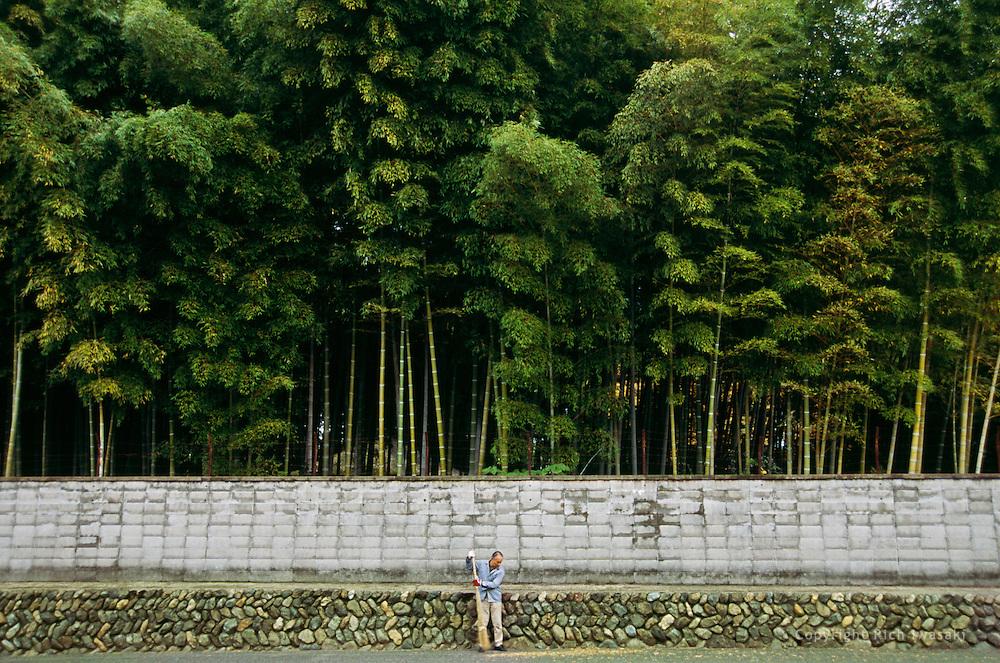Worker sweeps leaves near entrance of Koryuji (temple), Kyoto Prefecture, Kyoto, Japan