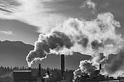 Nippon Paper Industries  Mill, November, Port of Port Angeles, North Olympic Peninsula, Washington, USA