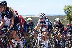 Tayler Wiles (USA) at Deakin University Elite Women Cadel Evans Road Race 2019, a 113 km road race starting and finishing in Geelong, Australia on January 26, 2019. Photo by Sean Robinson/velofocus.com