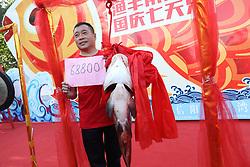 September 29, 2018 - Xinyang, Xinyang, China - Xinyang, CHINA-The fishing festival is held in Xinyang, central China's Henan Province.The 1.36-meter-long fish of  18 kilogram is sold at the price of RMB 68,800 yuan. (Credit Image: © SIPA Asia via ZUMA Wire)