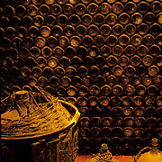 South America, Uruguay; Colonia, wine cellar in a traditional family winery.