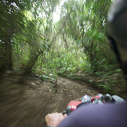 A quad biker drives through a forest track on a quad bike course near Taupo with Taupo Quad Bikes. Taupo, North Island,  New Zealand. 7th January 2011. Photo Tim Clayton.