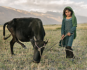 Young girl with the family calf. The traditional life of the Wakhi people, in the Wakhan corridor, amongst the Pamir mountains.