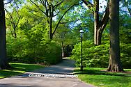 65021-03514 Photo Illustration of walkway in spring, Missouri Botanical Gardens  St Louis, MO