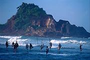 Sri Lanka. Stilt Fishermen off the south coast of the island.