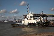 Tug boat, Port of Felixstowe, Suffolk, England