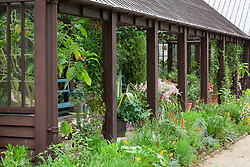 Container display in The Plant House at Hidcote Manor Garden