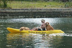 Kayaking With Dogs, Kings Bay, Crystal River
