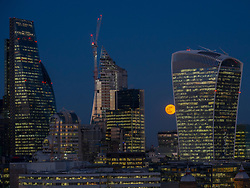 © Licensed to London News Pictures. 31/01/2018. LONDON, UK.  The supermoon rises behind the Walkie Talkie building in the City of London.  The moon is at its closest point, the perigee, to Earth during its monthly orbit and appears 30% brighter and 14% larger.  January 2018 has already seen a supermoon known as a 'wolf moon' on 1 January and today a 'blue moon'.  Photo credit: Stephen Chung/LNP
