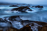 090-P104095<br /> <br /> Point Lobos State Reserve<br /> © 2019, California State Parks.<br /> Photo by Brian Baer