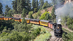 The train is captured as it approaches the Million Dollar Highway underpass.