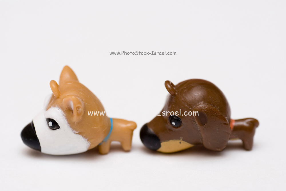 Puppy Love - Back Sniff a conceptual image of two toy dogs in an intimate relationship