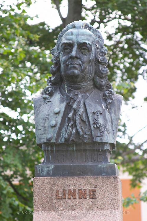 A statue of Carl von Linné Linne Carolus Linnaeus in the cathedral park. In the Linné Linne Linnaeus park. Vaxjo town. Smaland region. Sweden, Europe.