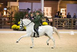 Marcari Oliva Joao Victor, (BRA), Signo Dos Pinhais<br /> Grand Prix Freestyle Test<br /> CDI 4* Azelhof Lier 2015<br /> © Hippo Foto - Leanjo de Koster
