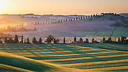 The characteristic Tuscan landscape of the province of Siena at sunset