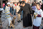 A Roman Catholic priest blesses a dog during the annual blessing of the animals on the feast day of San Antonio Abad at Oratorio de San Felipe Neri church January 17, 2020 in the historic center of San Miguel de Allende, Guanajuato, Mexico.