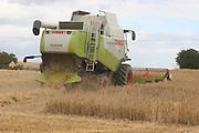 class, combine, harvester, barley, brewing, fodder, arable, tillage, farming,