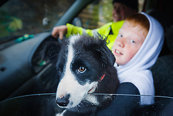 Boy holding young sheep dog in front seat of car Barnabaun Point, County, Mayo, Ireland