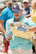 A volunteer carries a Green sea turtle to the ocean past cheering crowds during the release of rehabilitated sea turtles May 14, 2015 in Isle of Palms, South Carolina. The turtles were rescued along the coast and rehabilitated by the sea turtle hospital at the South Carolina Aquarium in Charleston.