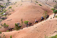 Scenic Views on horseback, Bryce Canyon National Park, located Utah, in the Southwestern United States.