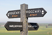 Ridgeway long distance footpath direction signs on Hackpen Hill, Wiltshire, England, UK
