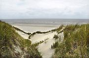 Nederland, Ameland, 21-8-2012In de duinen op het waddeneiland Ameland.Foto: Flip Franssen/Hollandse Hoogte