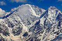 Russia, Caucasus. Mount Donguzorun (4448 m asl) with yellow-billed Choughs, Pyrrhocorax graculus.