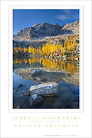 Purcell Mountains Poster #25811